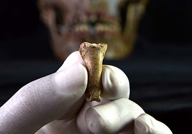 Did Neanderthals Share Eagle-Talon Styling With Homo Sapiens 40,000 Years Ago?
